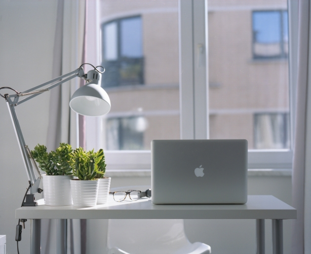 Work from home jobs that require no experience