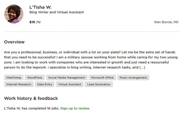 Virtual Assistant Title and Overview Example